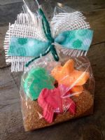 BEACH BATH BOMB FIZZ Gift Set